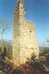 Leggi tutto: La Torre